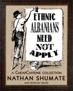 ethnic albanians front